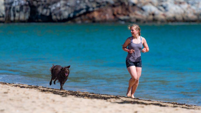 Joggen mit Hund - Tipps und Tricks